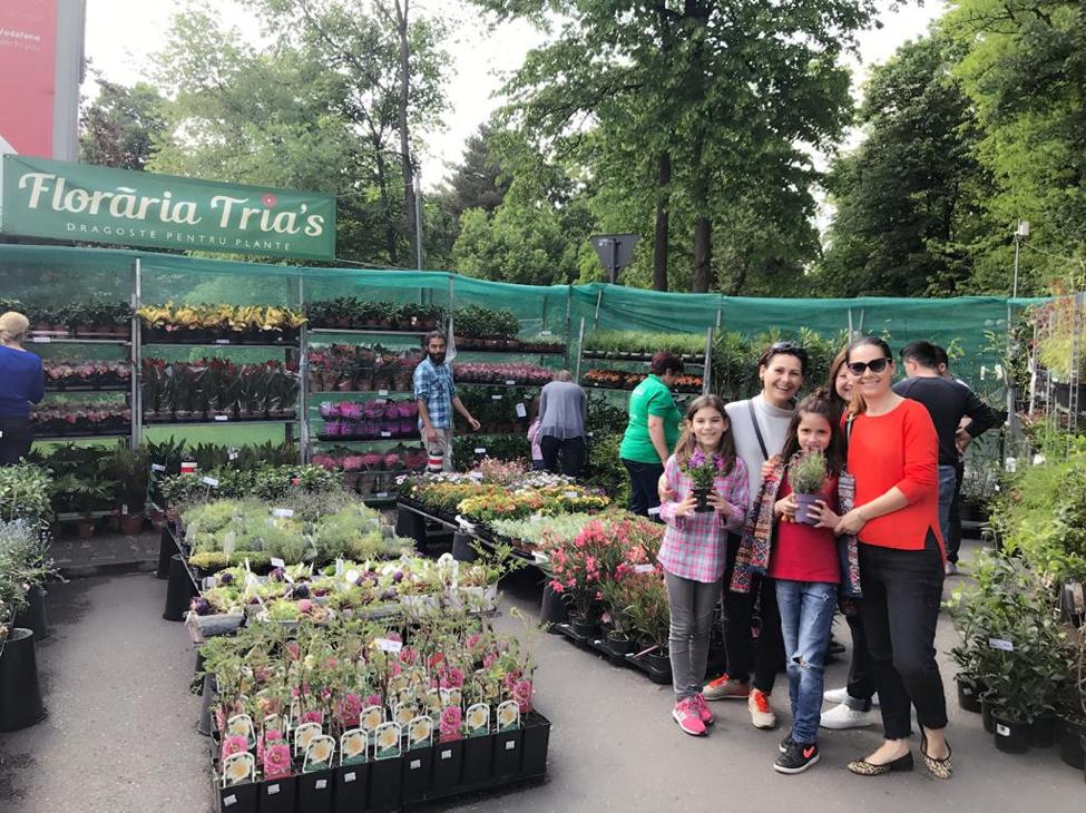 stand floraria trias