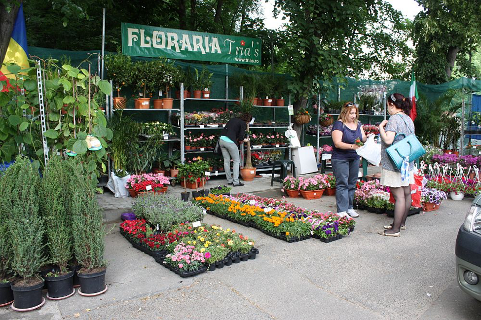 standul florariei trias de la hortus florshow romania