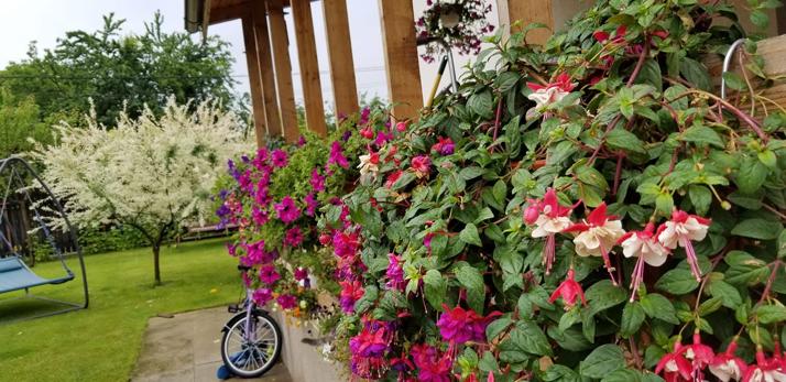 jardinierele cu auto-udare