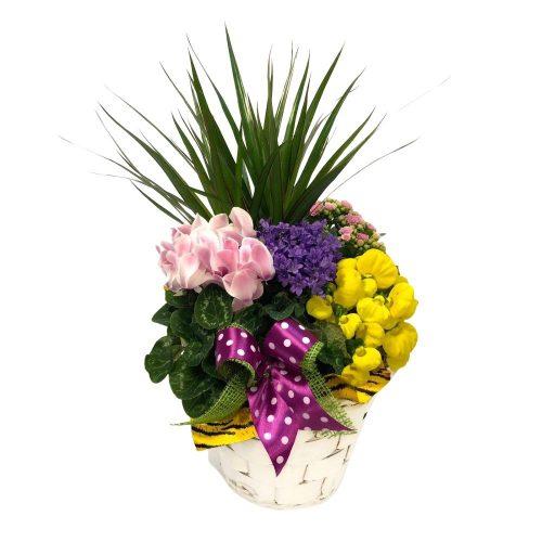Aranjament din plante naturale 110