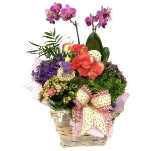Aranjament din plante naturale nr.113