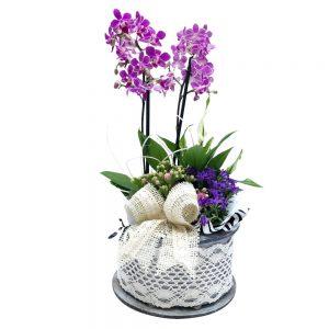 Aranjament din plante naturale nr.142