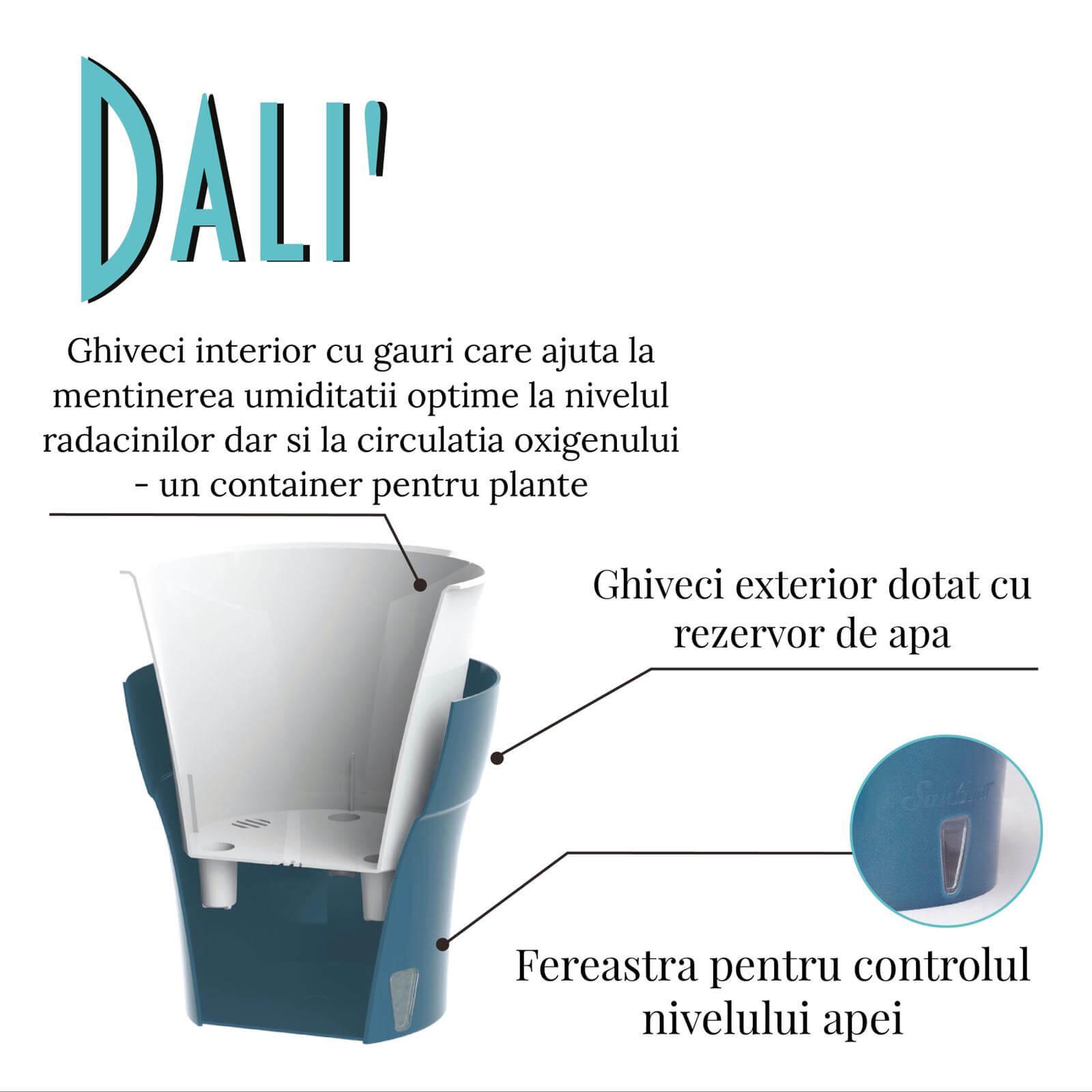 Ghiveci Santino Dali