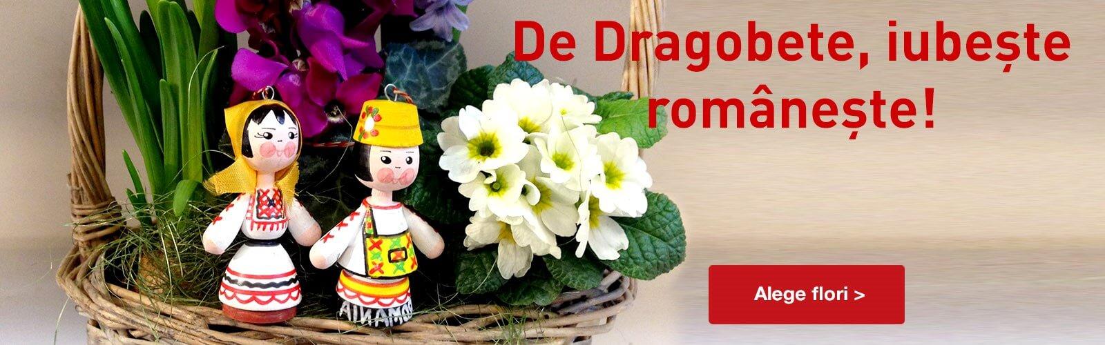 drafobete banner desktop