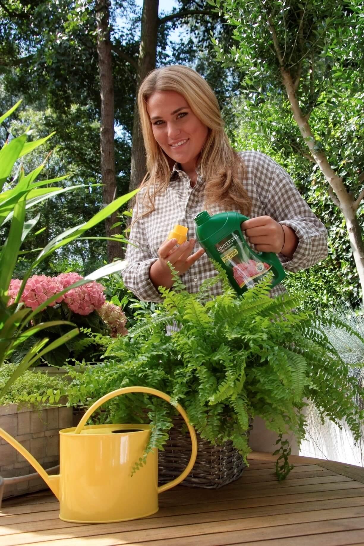 top 5 activitati relaxante pentru casa ta hraneste plantele