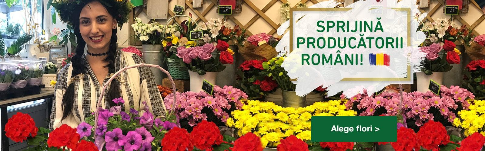 Floraria Trias producatori RO_banner_site_1600x500px