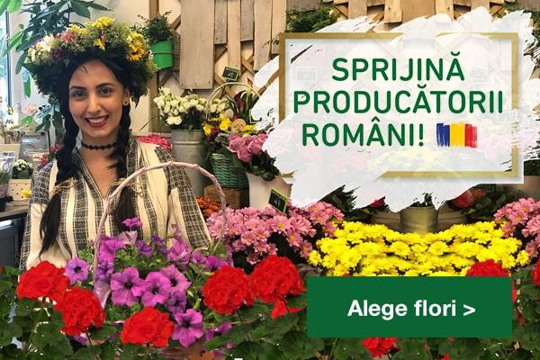 Floraria Trias producatori RO_banner_site__mobile_600x400px