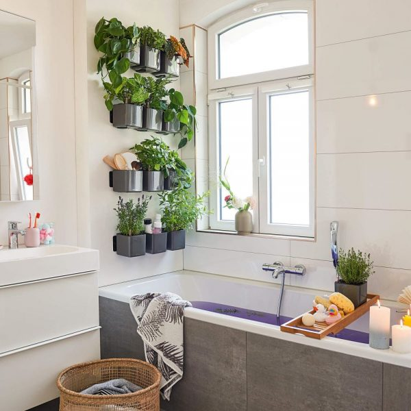 Green Wall Home Kit Glossy charcoal high-gloss (3)