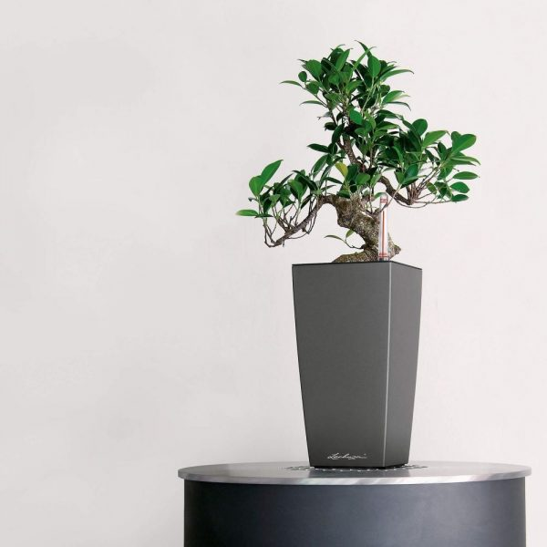 MAXI-CUBI charcoal metallic (1)
