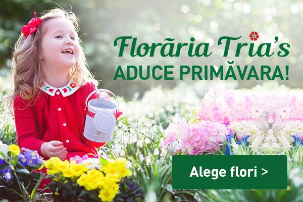 Primavara banner_mobile_600x400px_gradina (1)