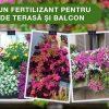 POKON FERTILIZANT LICHID PENTRU PLANTE DE TERASA SI BALCON. SFATURI DE LA FLORARIA TRIAS.
